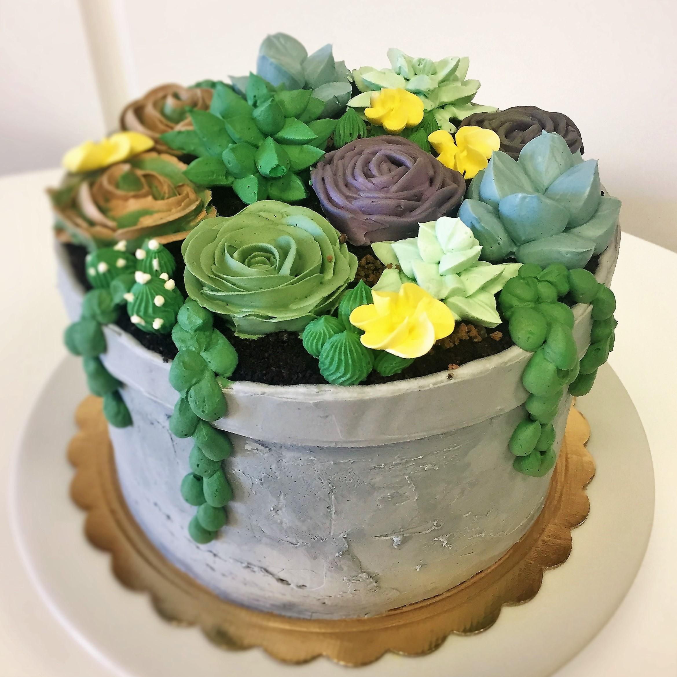 8'' succulent cake